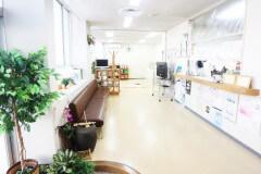 広く開放的な待合室